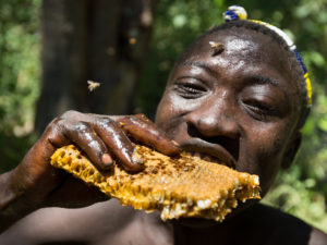 Is The Secret To A Healthier Microbiome Hidden In The Hadza Diet?